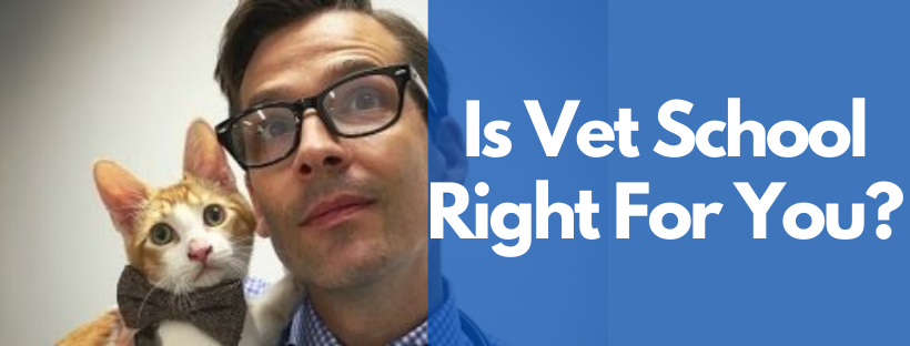Is Vet School Right For You?